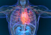 La equivalente toxicidad cardiovascular entre vapeadores y no fumadores